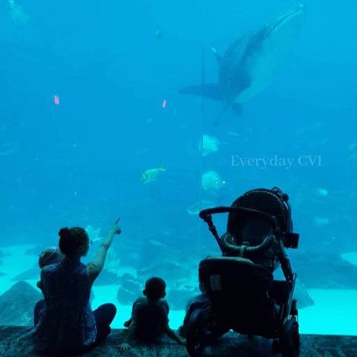 Aquarium10-wm