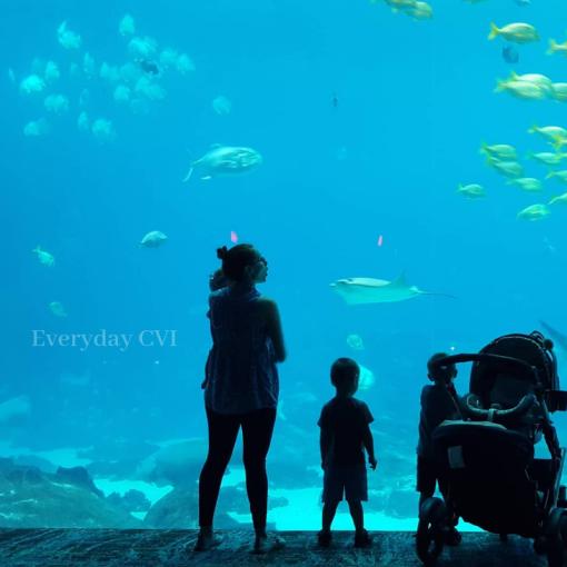 Aquarium9-wm